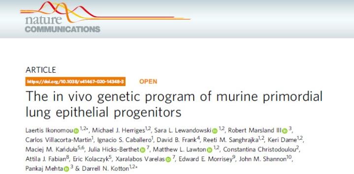 In vivo genetic program